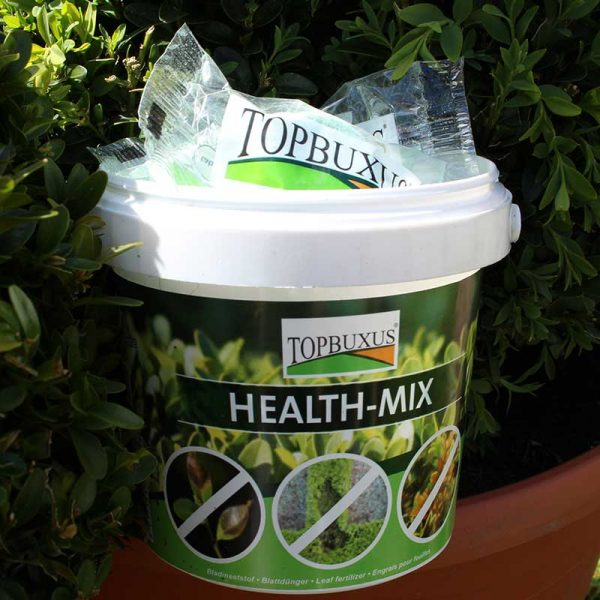 TopBuxus Health-Mix 10 Pack