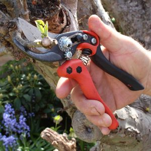 Bahco Ergonomic Secateurs