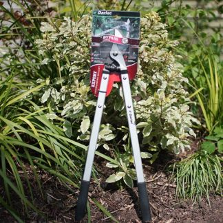 Darlac Bypass Loppers DP1020